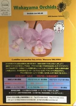 当社オリジナル商品満載のカタログ(オーキッドリスト)No.60をアップいたしました。